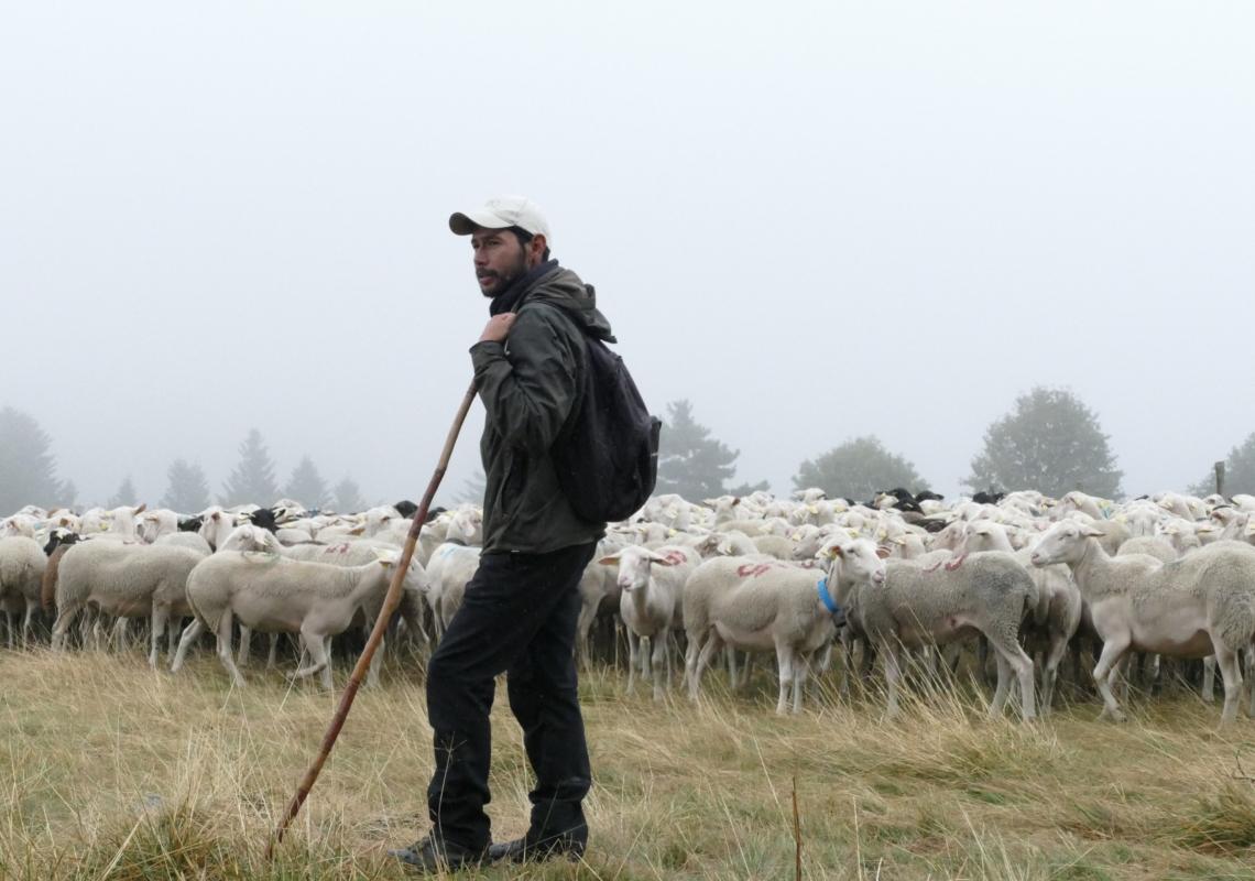 Les rendez-vous du patrimoine «Berger & pastoralisme sur les Hautes-Chaumes»