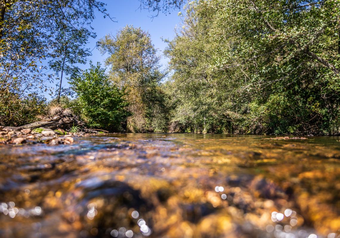 Enquête contrat territorial de l'Eau-Mère et du ruisseau des Parcelles