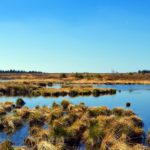 Inventaire des zones humides
